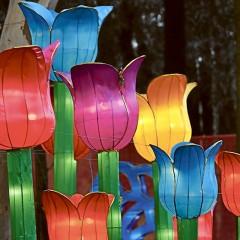 LANTASIA – A light sculpture event in the night garden