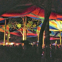 Fear & Loathing at Rainbow Serpent