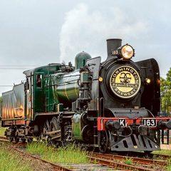 All aboard the Ale Train
